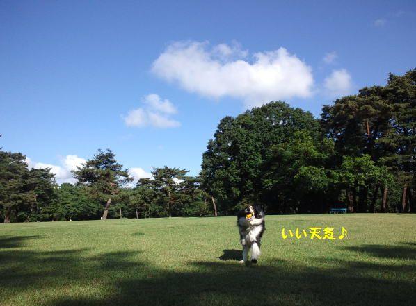d0224111_09010361.jpg