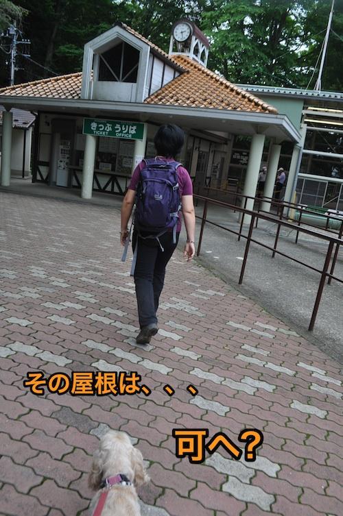 下りにもドラマが有り_b0067012_2402185.jpg