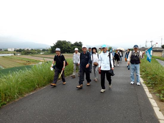 桂川河川敷ウウォーキング_e0048413_20374048.jpg
