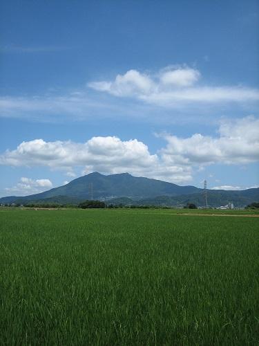 今日の筑波山とお洋服_b0100229_1340283.jpg