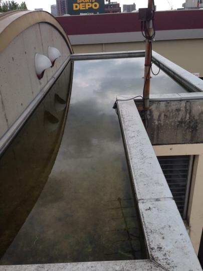 たまには屋上へ_b0212031_17472788.jpg