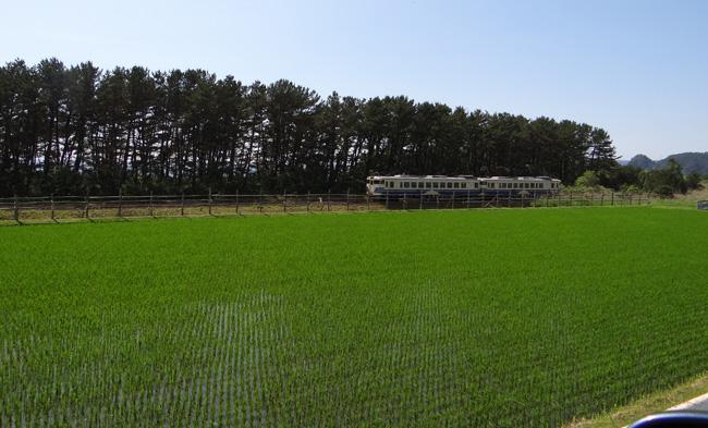 初夏の西海岸ドライブ。海と蕎麦畑の景色など~♪_a0136293_16325749.jpg