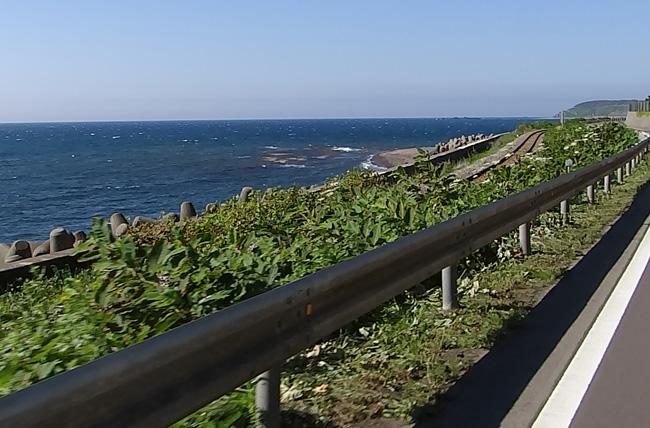 初夏の西海岸ドライブ。海と蕎麦畑の景色など~♪_a0136293_16405821.jpg