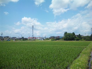 blog:水沢の夕陽_a0103940_11575321.jpg