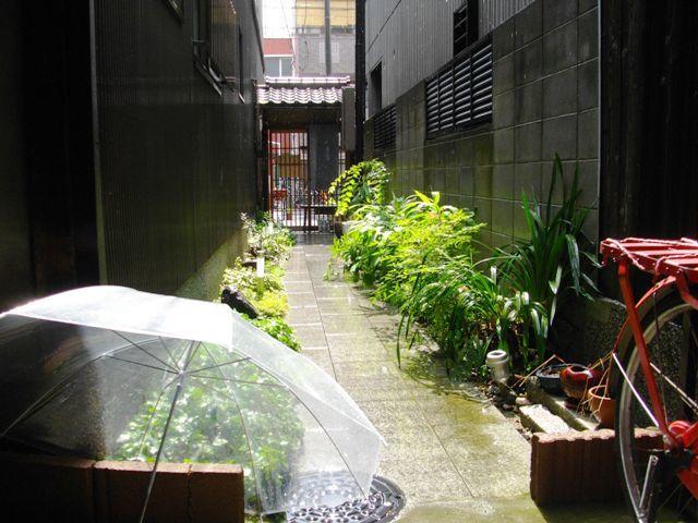 天気雨_e0230141_09161031.jpg