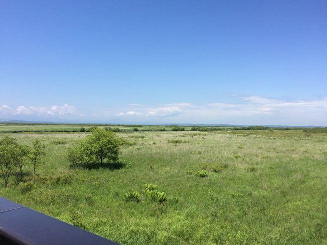 釧路湿原マラソン30kmコース試走_a0156548_18265717.jpg