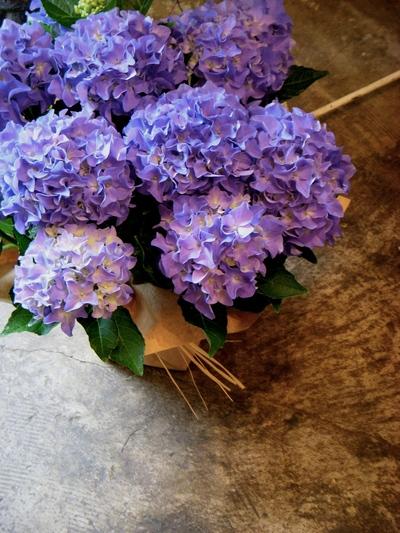 父の日にはお花を。。。_a0229658_16465085.jpg