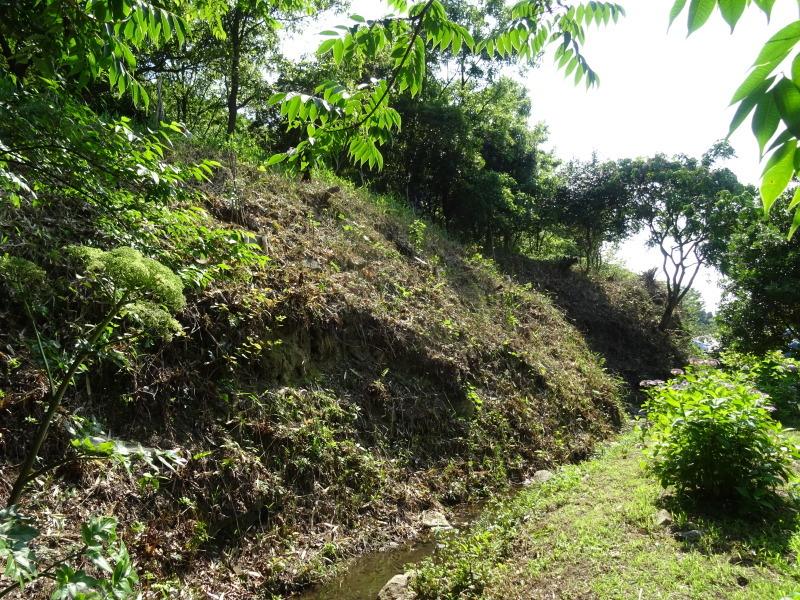 崖っぷちの斜面に植樹しました in うみべの森_c0108460_22534917.jpg
