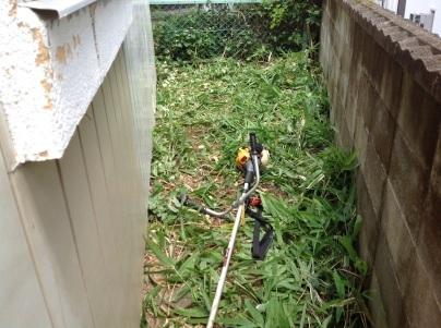 草刈り、剪定、除草剤散布_c0186441_19204211.jpg