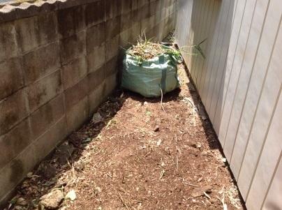 草刈り、剪定、除草剤散布_c0186441_19210655.jpg