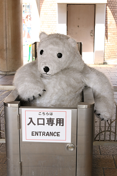 大阪天王寺動物園 シロクマのモモちゃん_a0003650_2254557.jpg