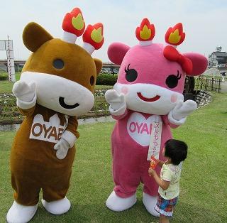 2015年 花菖蒲祭り_c0208355_1535100.jpg