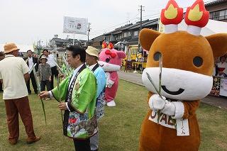 2015年 花菖蒲祭り_c0208355_15551363.jpg