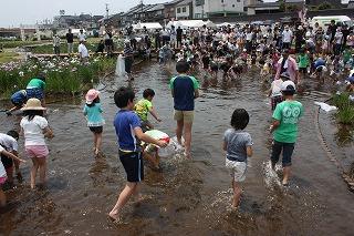 2015年 花菖蒲祭り_c0208355_179826.jpg