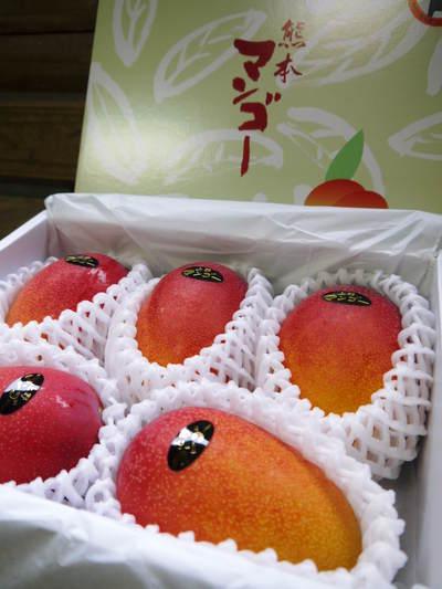 完熟アップルマンゴー 完熟マンゴーへのこだわりと発送日について!_a0254656_1919779.jpg