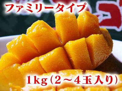 完熟アップルマンゴー 完熟マンゴーへのこだわりと発送日について!_a0254656_19215686.jpg