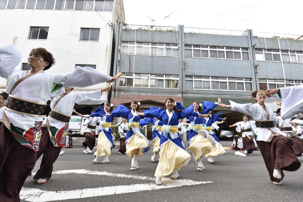 犬山踊芸祭「浜松学生連 鰻陀羅」_f0184198_15375830.jpg