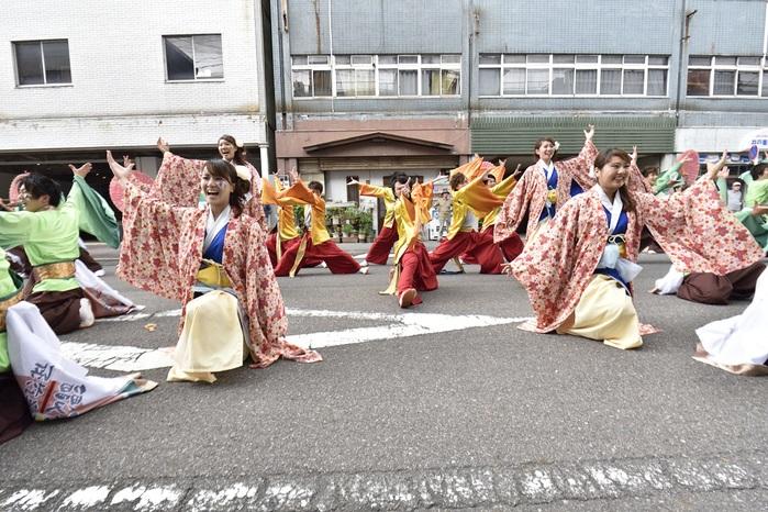 犬山踊芸祭「浜松学生連 鰻陀羅」_f0184198_15383864.jpg