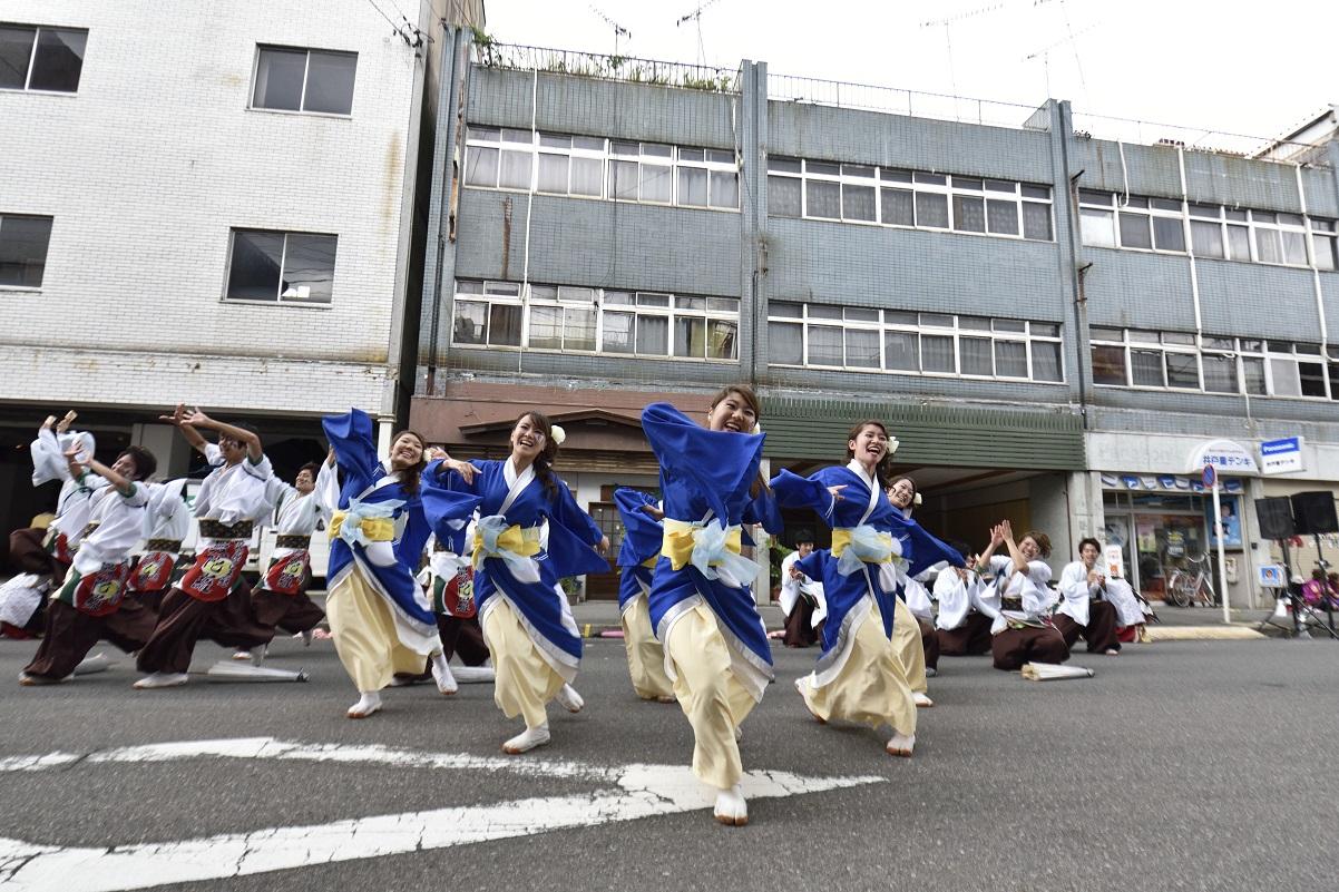 犬山踊芸祭「浜松学生連 鰻陀羅」_f0184198_1538778.jpg