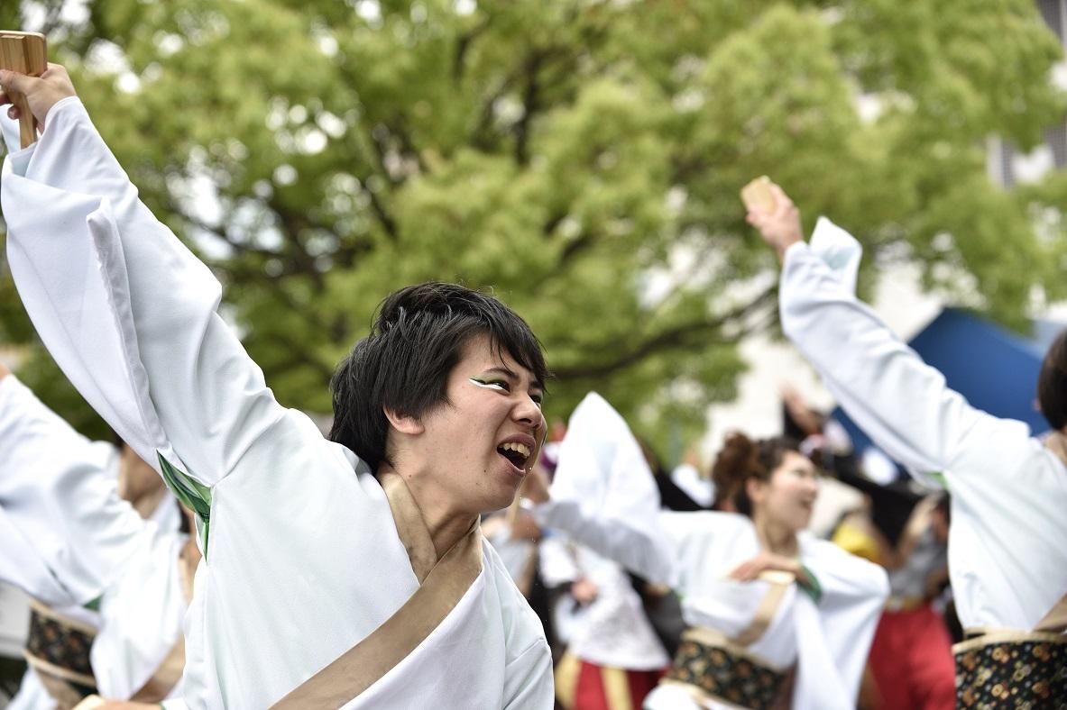 犬山踊芸祭「浜松学生連 鰻陀羅」_f0184198_15393987.jpg