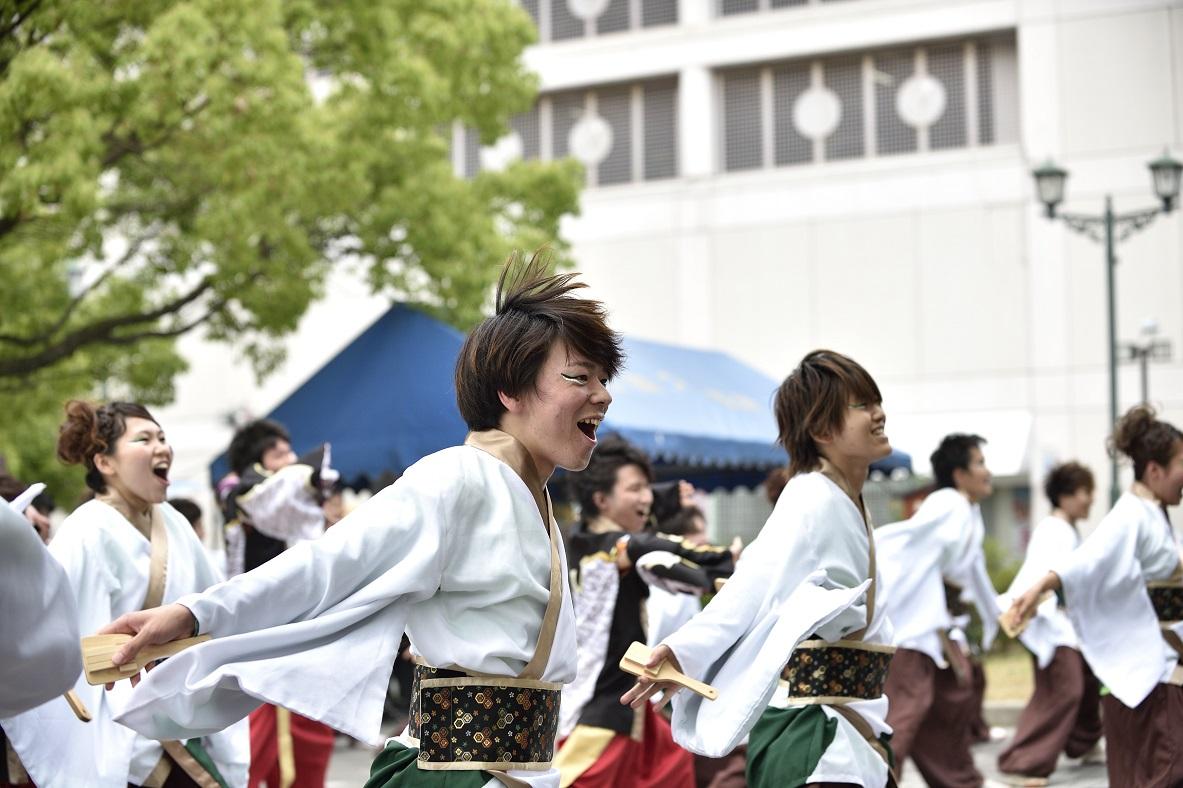 犬山踊芸祭「浜松学生連 鰻陀羅」_f0184198_15394616.jpg