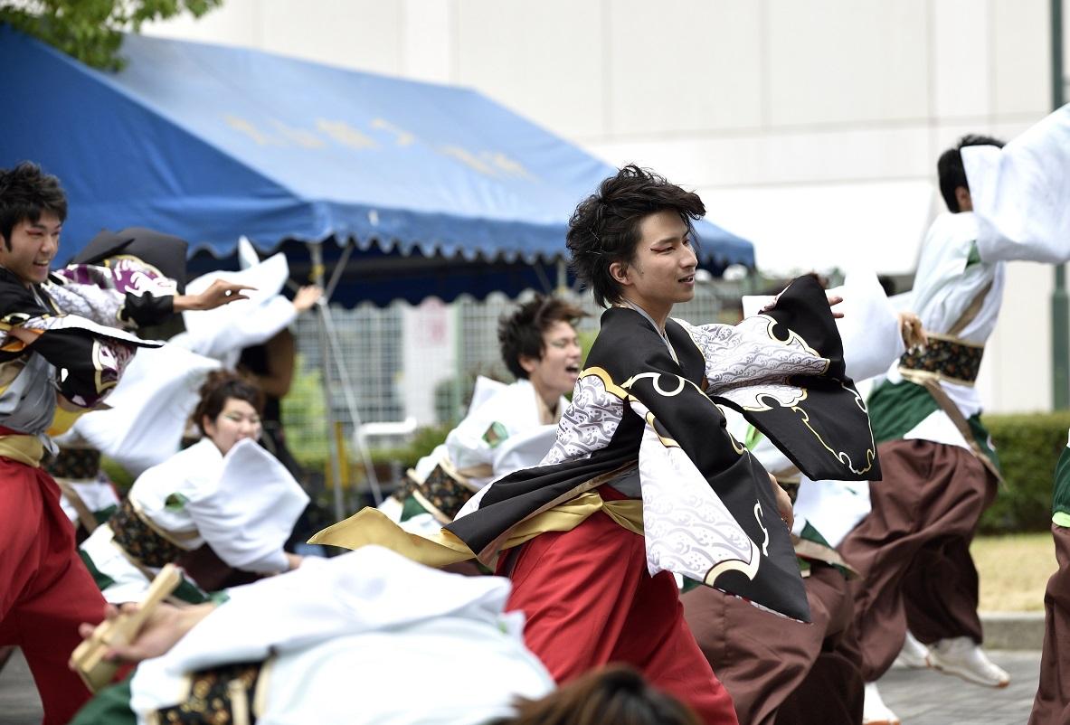 犬山踊芸祭「浜松学生連 鰻陀羅」_f0184198_15395332.jpg