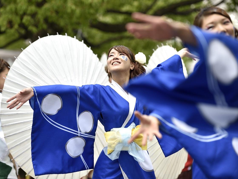 犬山踊芸祭「浜松学生連 鰻陀羅」_f0184198_15401374.jpg