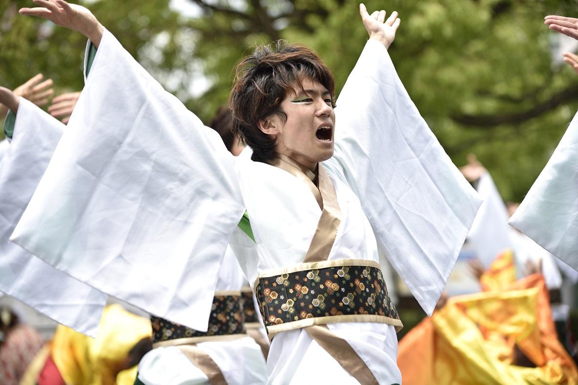 犬山踊芸祭「浜松学生連 鰻陀羅」_f0184198_15403963.jpg
