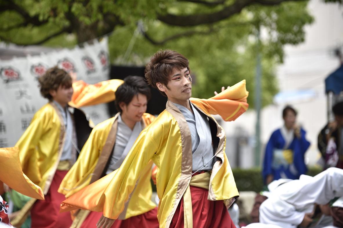 犬山踊芸祭「浜松学生連 鰻陀羅」_f0184198_15404792.jpg
