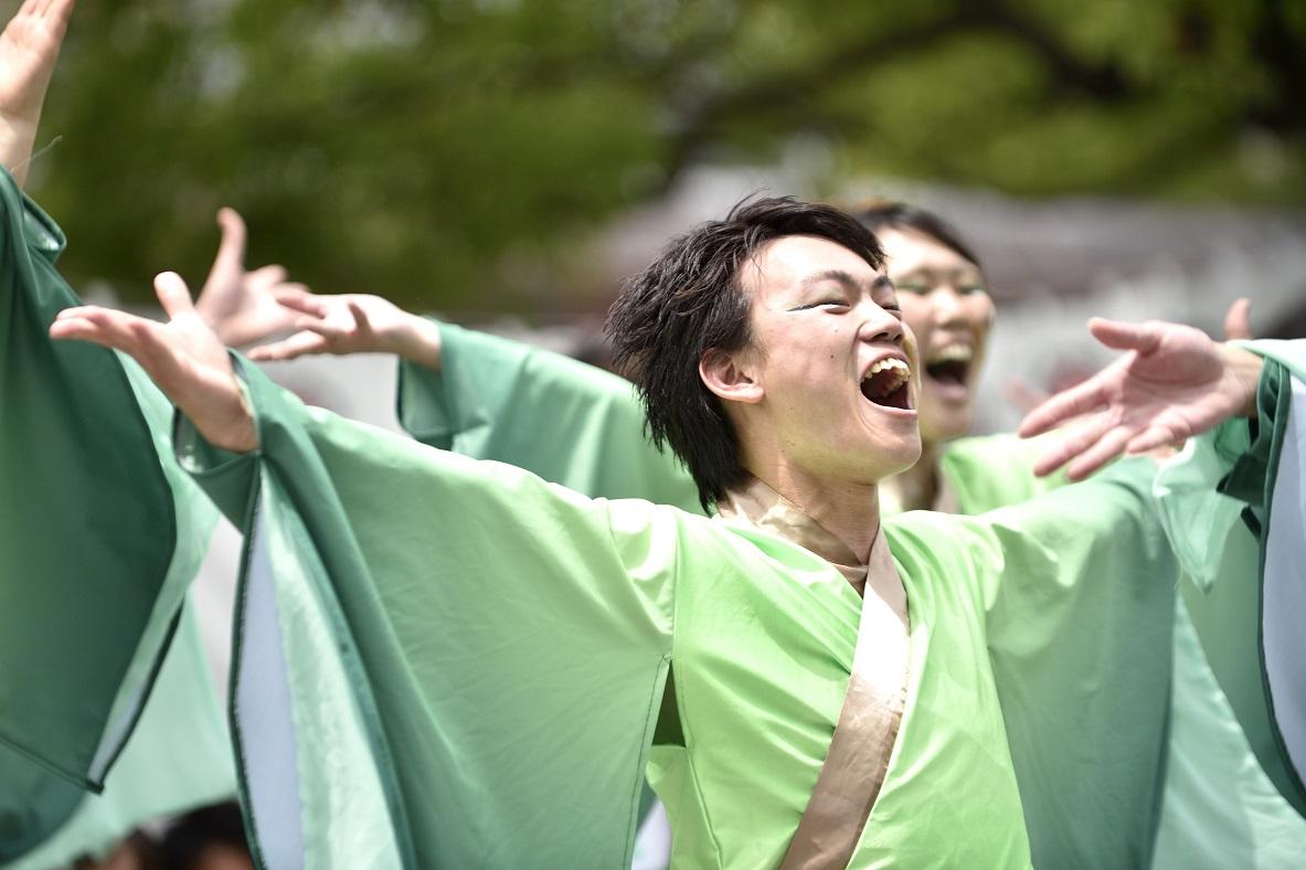 犬山踊芸祭「浜松学生連 鰻陀羅」_f0184198_1541361.jpg
