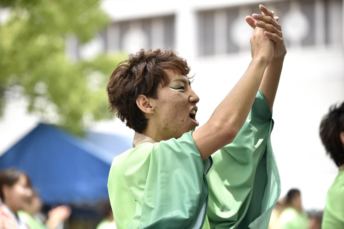 犬山踊芸祭「浜松学生連 鰻陀羅」_f0184198_15421290.jpg