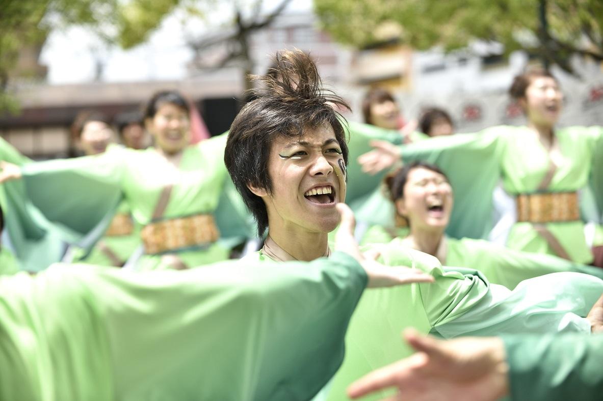 犬山踊芸祭「浜松学生連 鰻陀羅」_f0184198_15421886.jpg