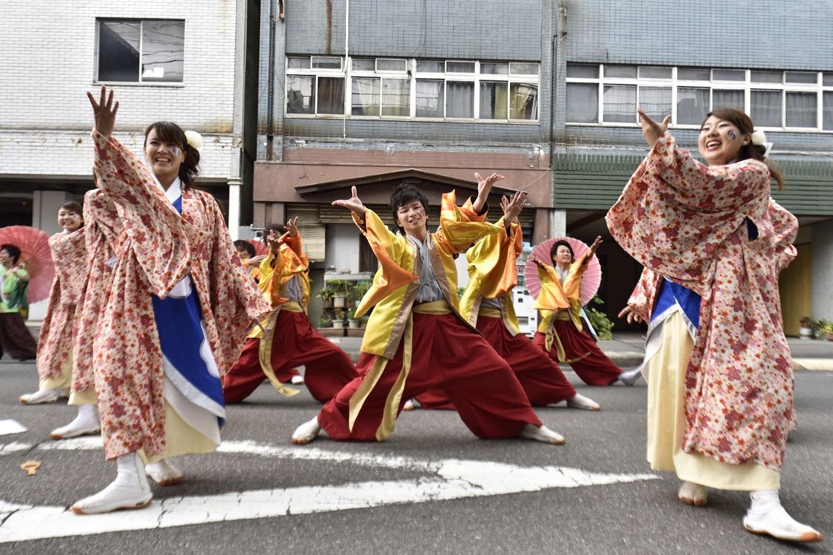 犬山踊芸祭「浜松学生連 鰻陀羅」_f0184198_15511696.jpg