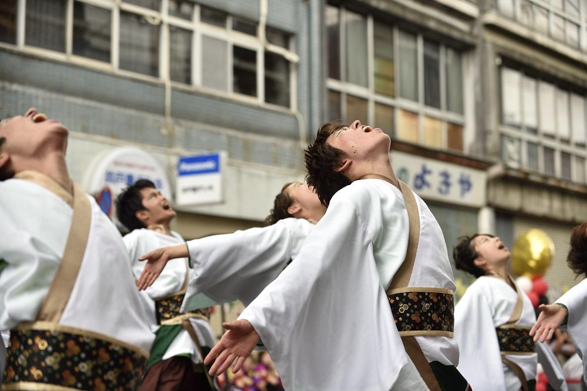 犬山踊芸祭「浜松学生連 鰻陀羅」_f0184198_15523333.jpg