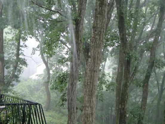 猛烈な雷雨_f0064906_17232225.jpg