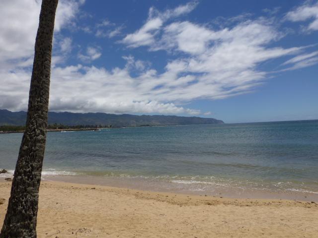 Hawaii 旅行記 ノースショア&ハレイワ編_e0237625_17315810.jpg