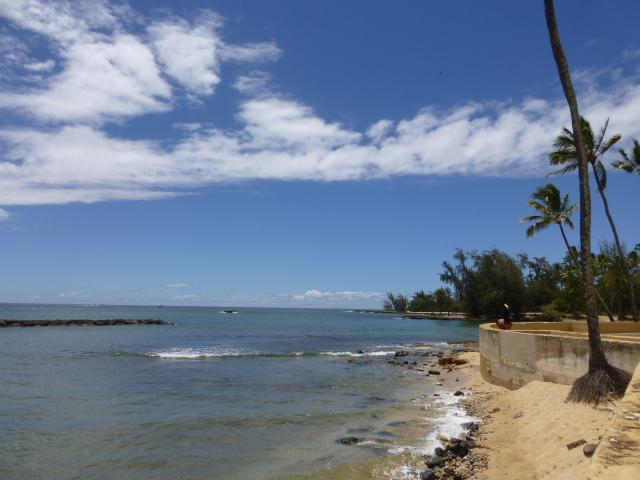 Hawaii 旅行記 ノースショア&ハレイワ編_e0237625_173621100.jpg