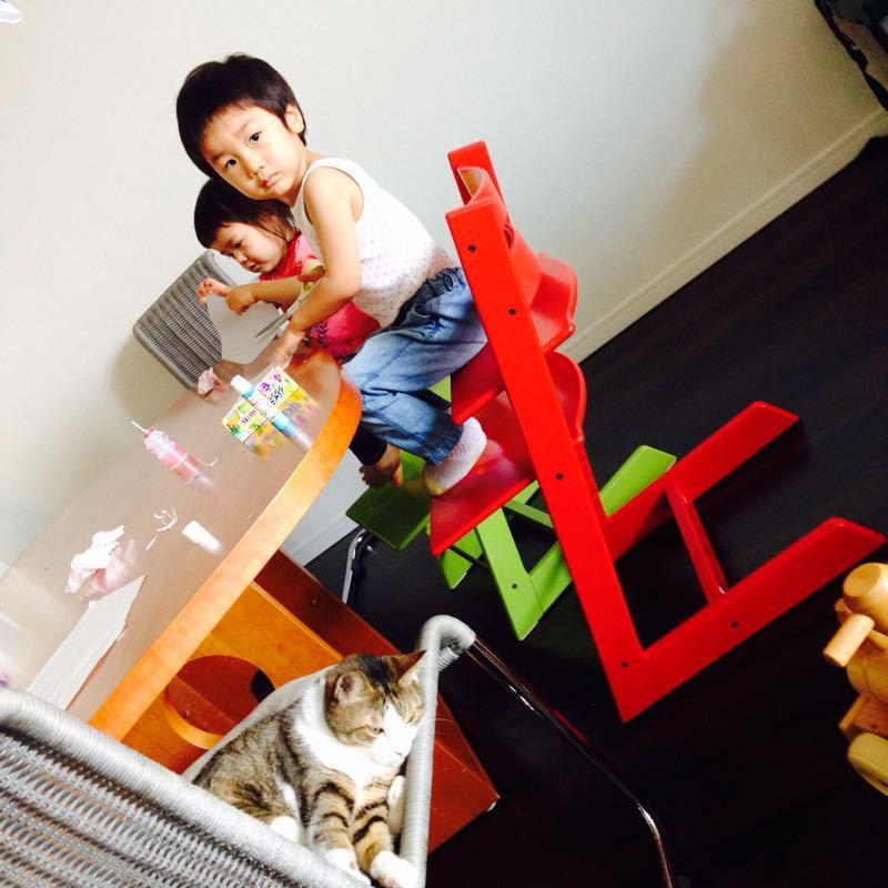 シオン3歳8ヶ月〜端午の節句に母の日に初めての運動会_e0253026_6173345.jpg