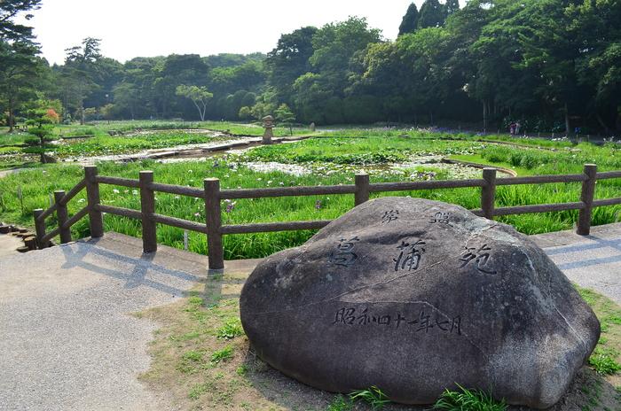 """""""彫刻と湖と花~ときわ公園をプチ散歩""""_d0153941_1823369.jpg"""