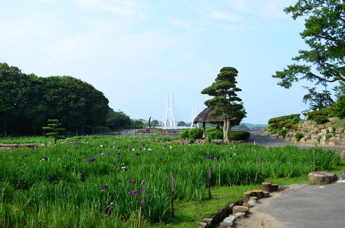 """""""彫刻と湖と花~ときわ公園をプチ散歩""""_d0153941_1831597.jpg"""