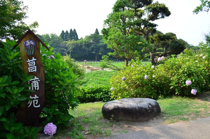 """""""彫刻と湖と花~ときわ公園をプチ散歩""""_d0153941_1835472.jpg"""