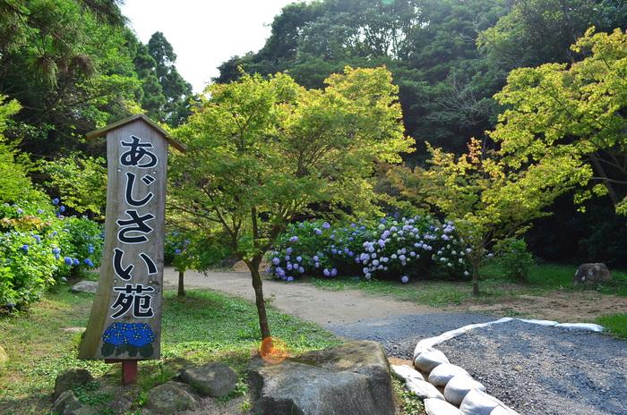 """""""彫刻と湖と花~ときわ公園をプチ散歩""""_d0153941_184865.jpg"""