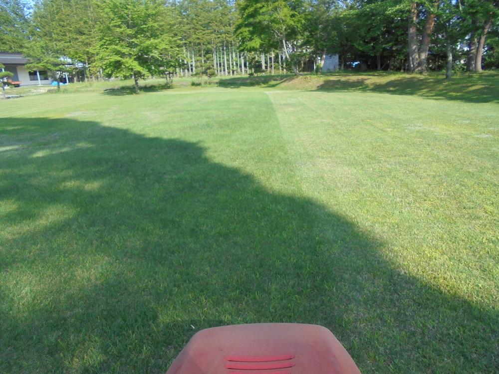 芝刈り_c0111229_19343871.jpg