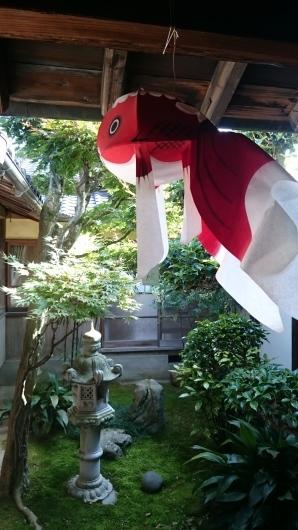 山口 柳井 白壁の街 (Yanai Yamaguchi)_c0325278_18533015.jpg