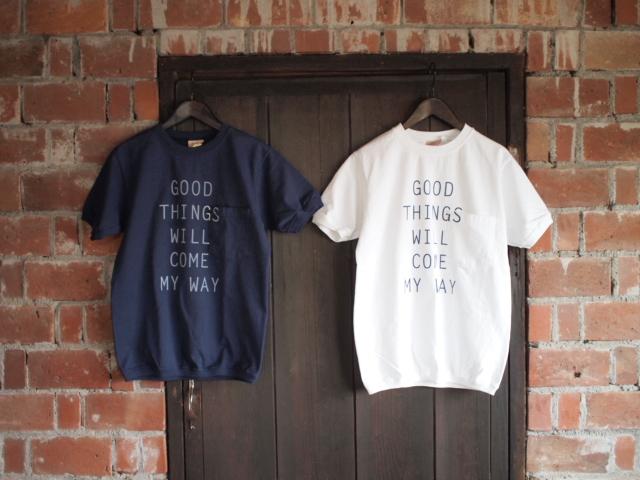 T-Shirt        _d0228193_10565372.jpg