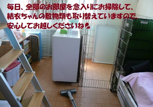 f0121712_1613021.jpg