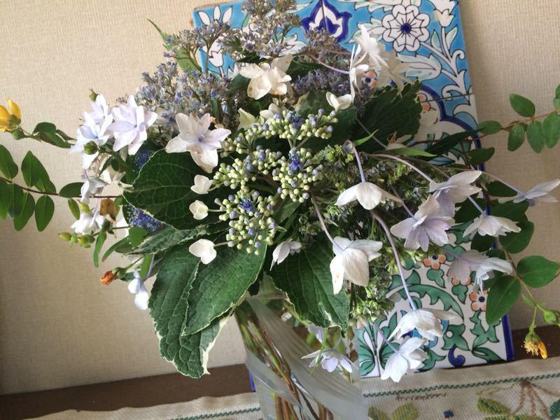 胡蝶蘭と紫陽花のフラワーアレンジメント_e0233674_22144589.jpg