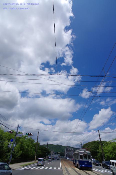 夏空のもとで_d0309612_041829.jpg