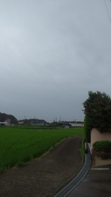 雨に_a0093423_7212239.jpg