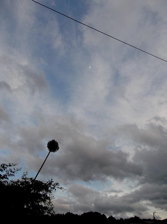 雲_e0193247_19381168.jpg